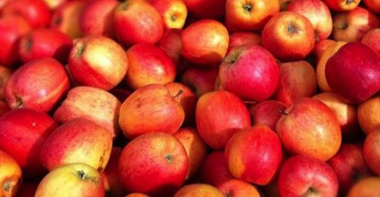 Apples_NL