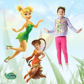 Disney Fairies Collection