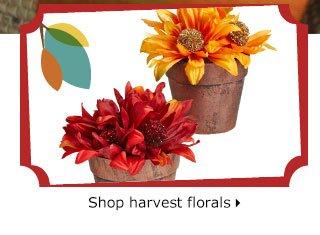 Shop harvest florals