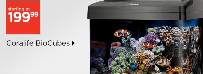 Coralife BioCubes starting at only $199.99