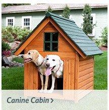 Canine Cabine