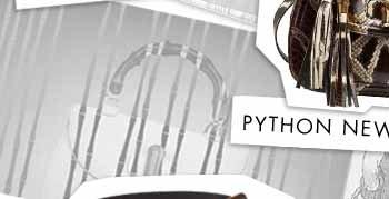 PYTHON NEW BAMBOO