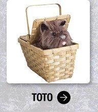 Shop Toto Basket