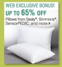Shop these WEB EXCLUSIVE BONUS BUYS! Up to 65% off Web exclusive pillows from Sealy®, Simmons®, SensorPEDIC and more
