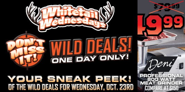 Dont Miss It! Wild Deals One Day Only! Wednesday, September 25th.