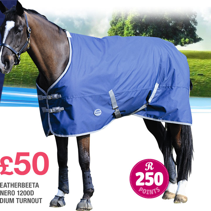 Weatherbeeta Genero 1200D Medium Turnout £50 (Earn 250 Rider Reward points worth £2.50)