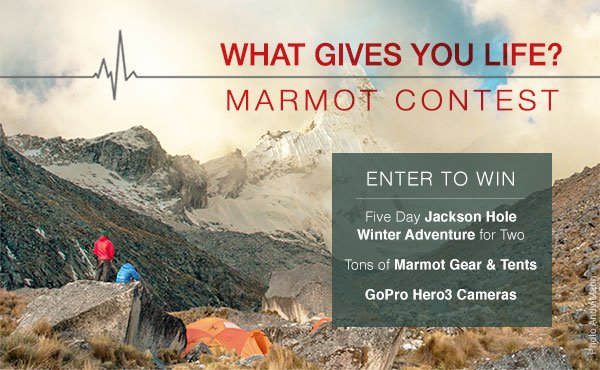What Gives You Life Marmot Contest