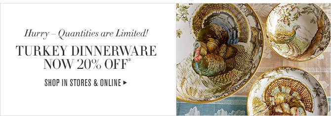 Hurry - Quantities are Limited! - TURKEY DINNERWARE - NOW 20% OFF* - SHOP IN STORES & ONLINE