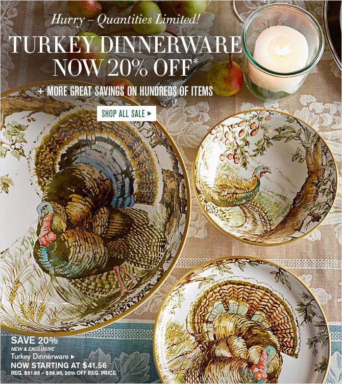 Hurry - Quantities Limited! - TURKEY DINNERWARE NOW 20% OFF* + MORE GREAT SAVINGS ON HUNDREDS OF ITEMS - SHOP ALL SALE