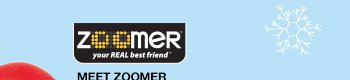 ZOOMER - your real best friend