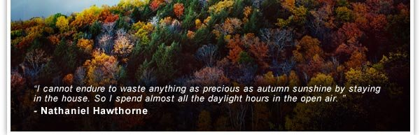 """I cannot endure to waste anything as precious as autumn sunshine by staying in the house. So I spend almost all the daylight hours in the open air. "" - Nathaniel Hawthorne"
