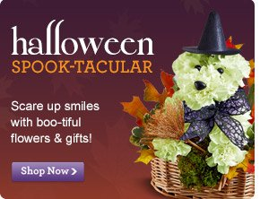 Halloween Scare up smiles with our spook-tacular flowers & gifts! Shop Now