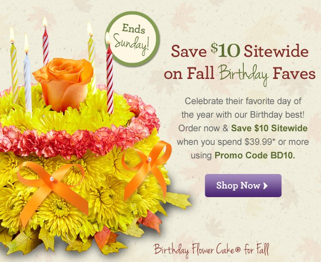 Save $10 Sitewide on Fall Birthday Faves  Celebrate their favorite day of the year with our Birthday best! Order now to Save $10 Sitewide when you spend $39.99* or more with Promo Code BD10 Ends Sunday!