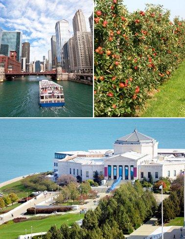 Chicago_378x489
