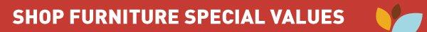 SHOP FURNITURE SPECIAL VALUES
