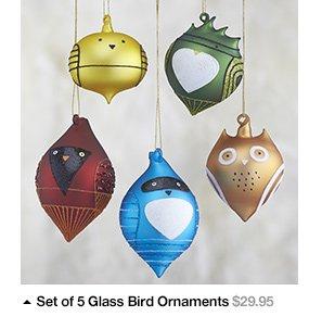 Set of 5 Glass Bird Ornaments $29.95