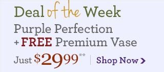 Deal of the Week Purple Perfection + Free Premium Vase & Your Choice of Free Halloween Gift, just $29.99**  Save Over 25%!  Shop Now