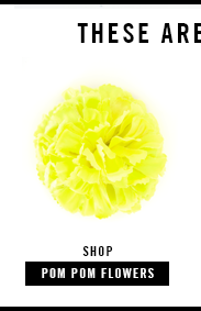 shop pom pom flowers