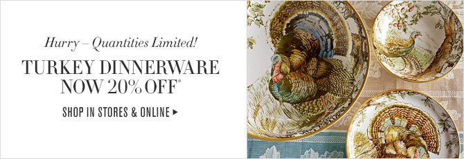 Hurry - Quantities Limited! TURKEY DINNERWARE NOW 20% OFF*  SHOP IN STORES & ONLINE