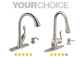 Your Choice: Delta Ashton Stainless or Moen Anabelle Spot Resist Stainless Faucets.