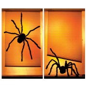 Shady Spiders Window Scene
