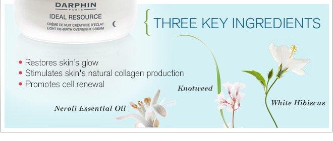 Three key ingredients: Knotweed, Centella Asiatica, White Hibiscus