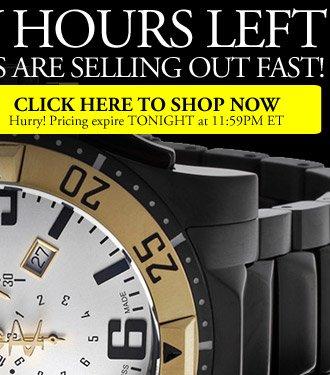 Invicta Watch Private Sale