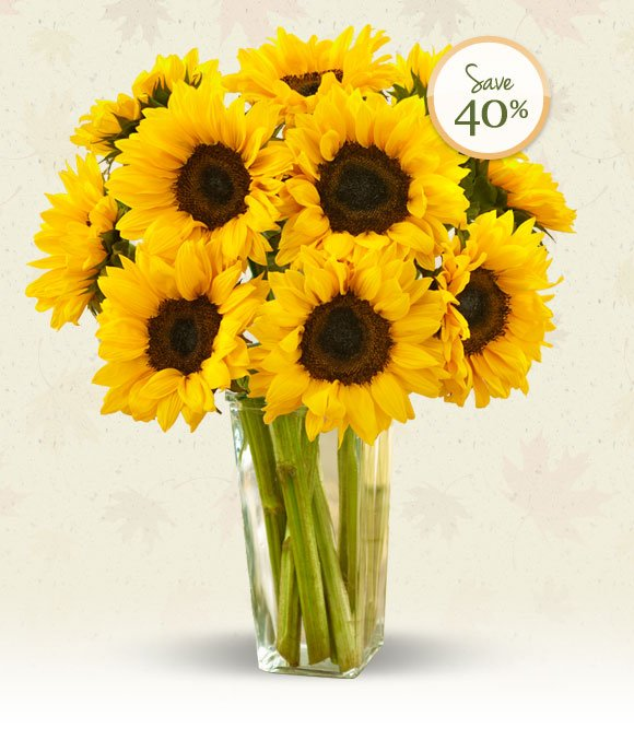 Let each brilliant stem of our fresh Sunflower Bouquet brighten Fall birthdays, housewarmings or any day they need a smile. Hurry, offer ends Thursday! Shop Now