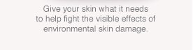 Give your skin what it needs to help fight the visible effects of environmental skin damage.