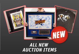 New Items on WWE Auction!