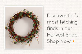 Discover fall's most fetching finds in our Harvest Shop.