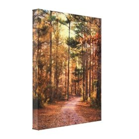 Nature Canvases
