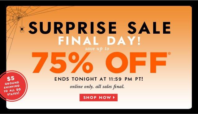 surprise sale final day. shop now.