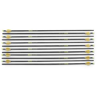 12 Trophy Ridge™ 350 Wrath™ Arrows