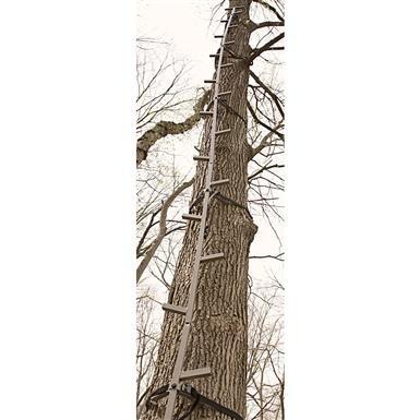 Guide Gear® 20' Climbing Stick