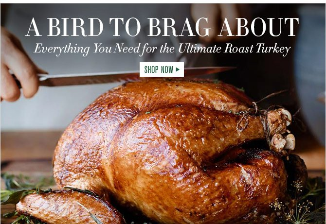 A BIRD TO BRAG ABOUT - Everything You Need for the Ultimate Roast Turkey - SHOP NOW
