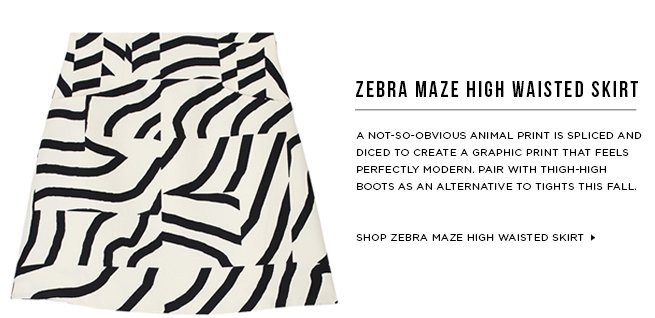Shop Zebra Maze High Waisted Skirt >