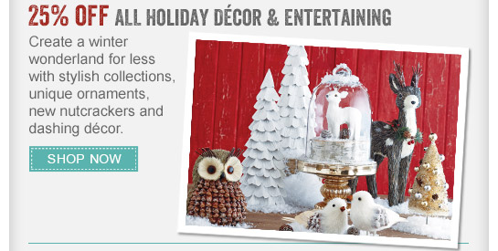 25% off All Holiday Decor & Entertaining