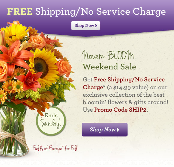 Free Shipping/No Service Charge  Novem-BLOOM Weekend Sale Get Free Shipping/No Service Charge* (a $14.99 value) on our exclusive collection of the best bloomin' flowers & gifts around! Use Promo Code SHIP2. Shop Now