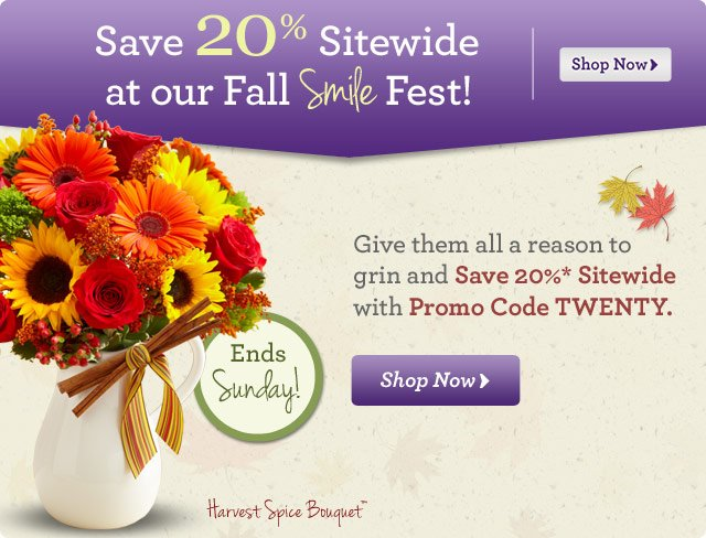 Save 20% Sitewide at our Fall Smile Fest! Give them all a reason to grin and Save 20%* Sitewide with Promo Code TWENTY.  Shop Now