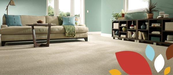 STAINMASTER® Carpet