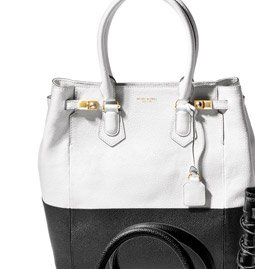 Carlyle North-South Blocked Tote