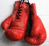 Boxing Gloves_NLsm