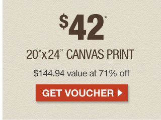 $42 Canvas at 71% off