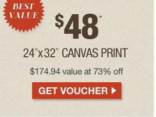 BEST VALUE: $48 Canvas at 73% off