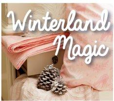 Winterland Magic