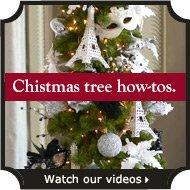 Christmas tree how-tos