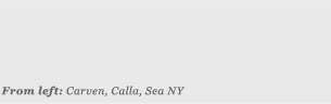 From left: Carven, Calla, Sea NY