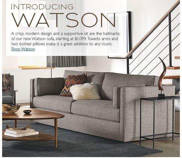 Introducing Watson