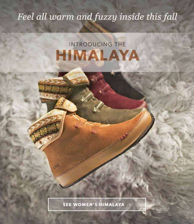 INTRODUCING THE HIMALAYA